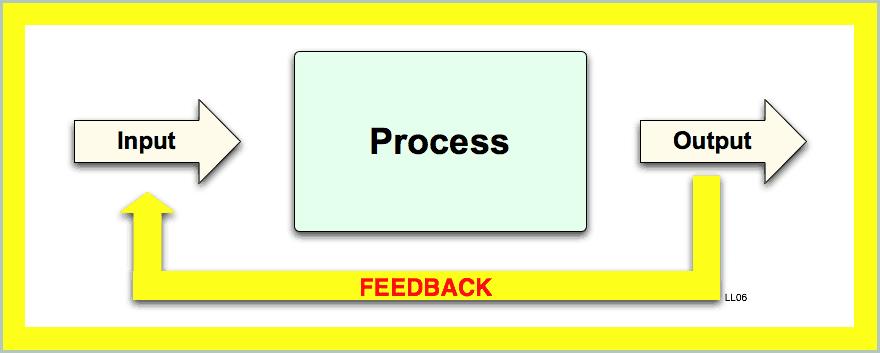 feedback_process-5
